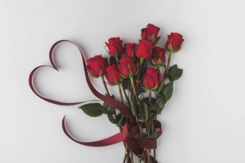 Ruža kao vaš verni saveznik