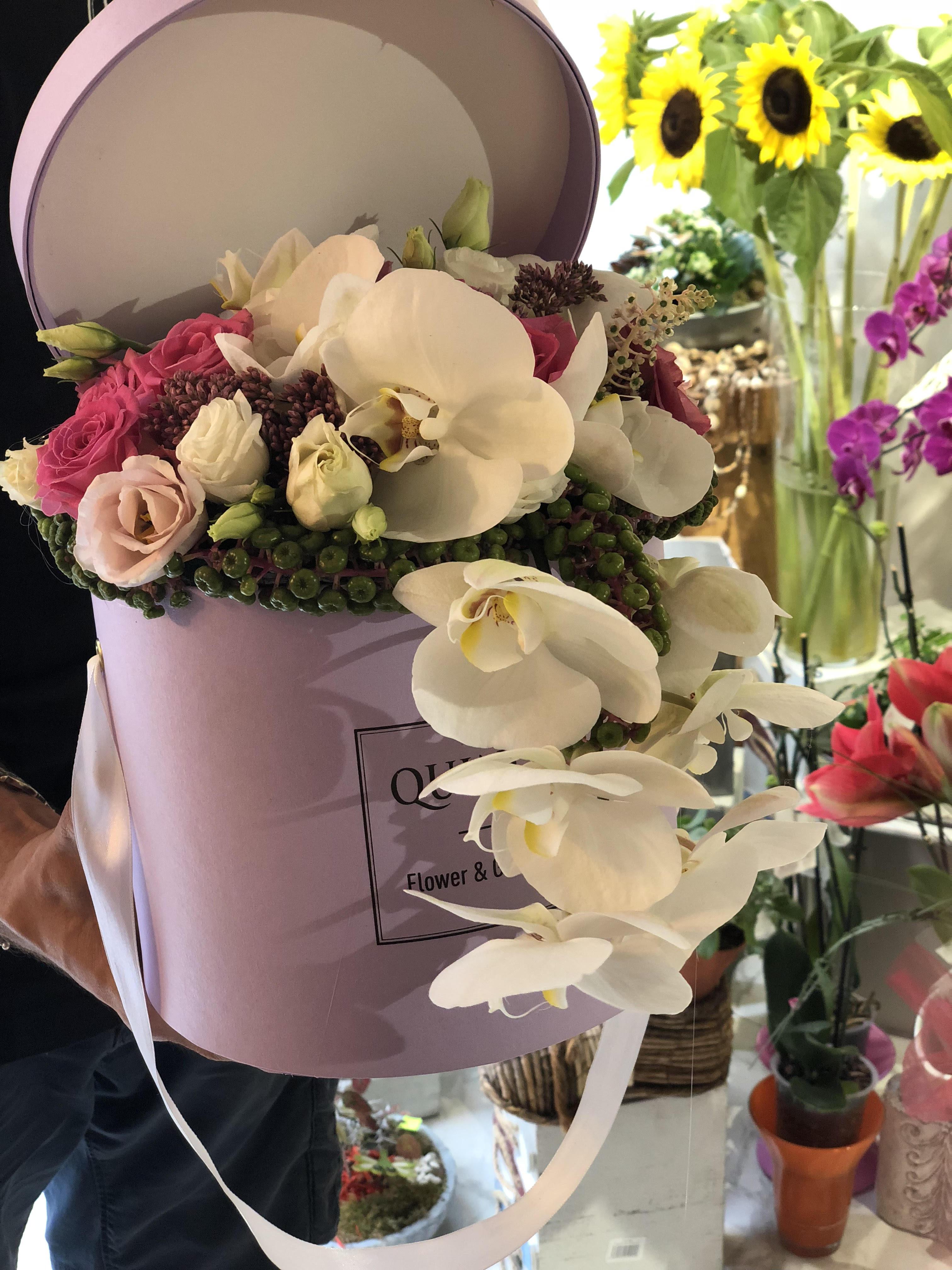 Box of flowers -  penelopsis Orhideja