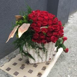 Cvetni aranžman 101 ruža u kopri