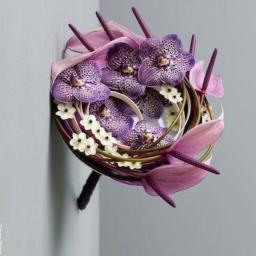 Buket vanda orhideje, anturijum i cvetovi ornitogaluma