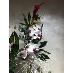 Cvetni aranžman alpinija i penelopsis orhideja