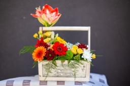 Cvetni aranžman amaryllis