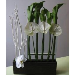 Cvetni aranžman zelene kale i beli anturijum