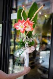 Cvetni aranžman amarilis
