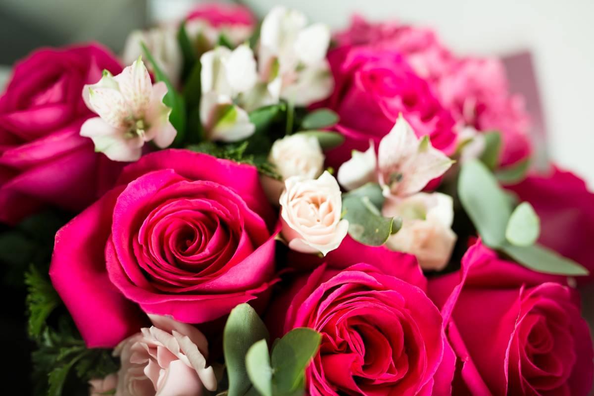 crvene roze ruze buket ruza