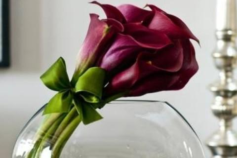 Prva godišnjica braka ili ljubičastim kalama se ne može pogrešiti