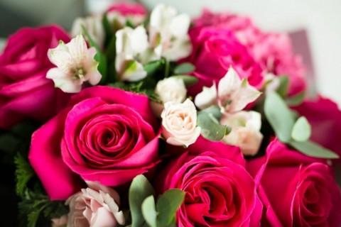 Ruža – kraljica među cvetnim princezama