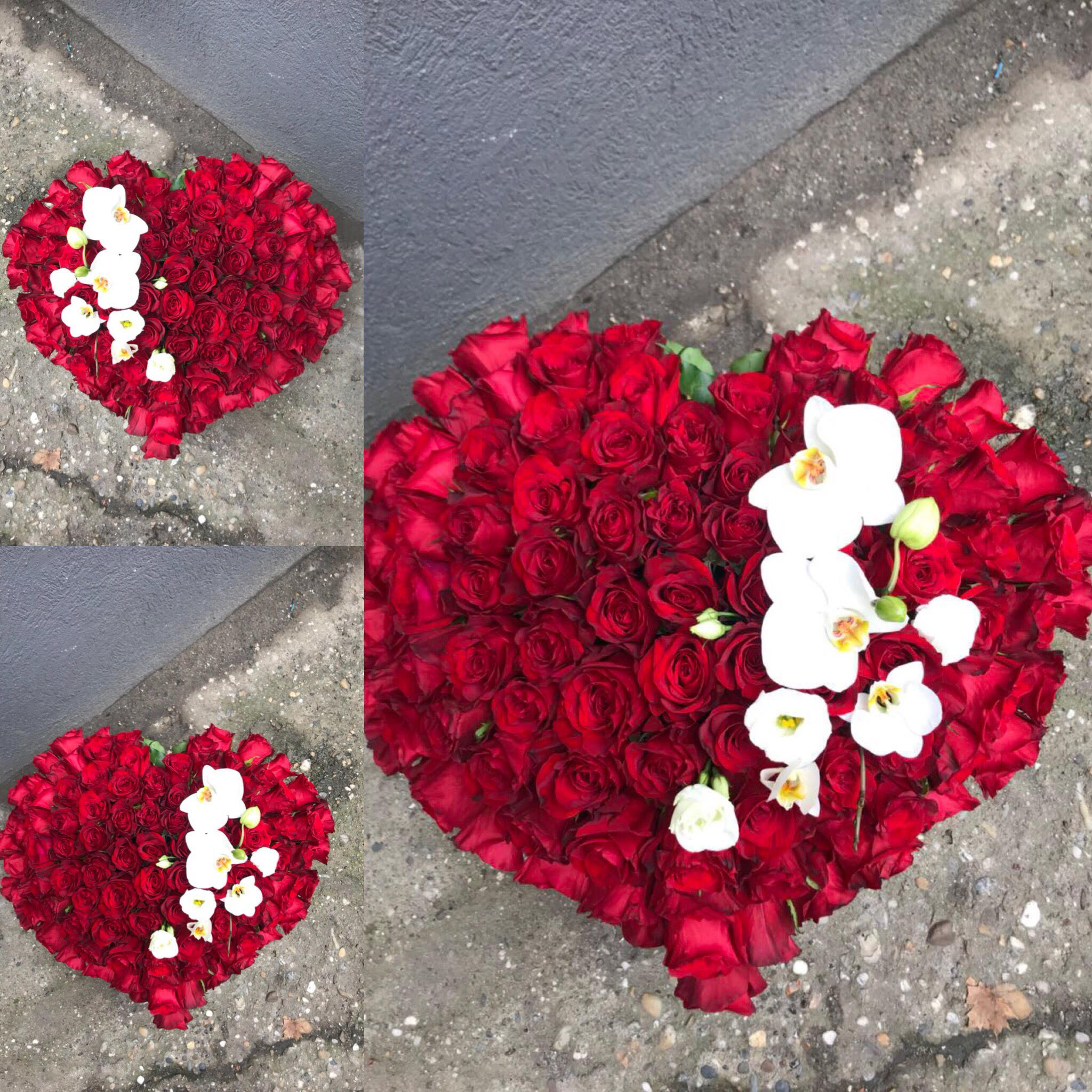 Cvetni aranžman 101 ruža srce sa penelposis orhidejama