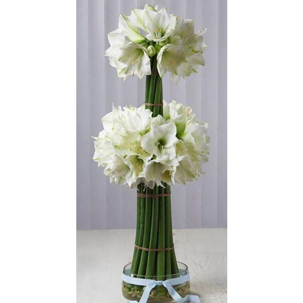 Cvetni aranžman 21 beli amarilis