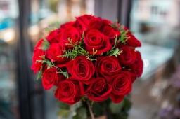 Buket 25 EKV crvenih ruža