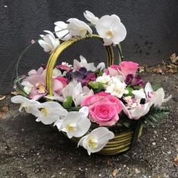 Cvetni aranzman penelopsis orhideje